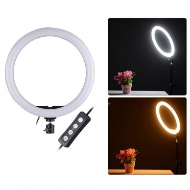 žiedinė LED lempa su valdikliu 24 cm 4